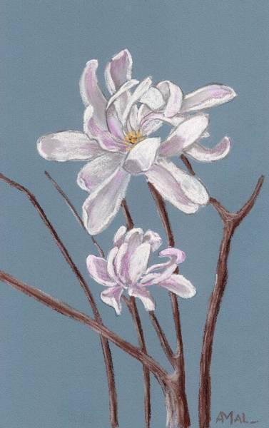 Painting - Star Magnolia  by Anastasiya Malakhova