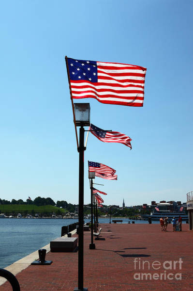 Photograph - Star Spangled Banner Flags In Baltimore by James Brunker