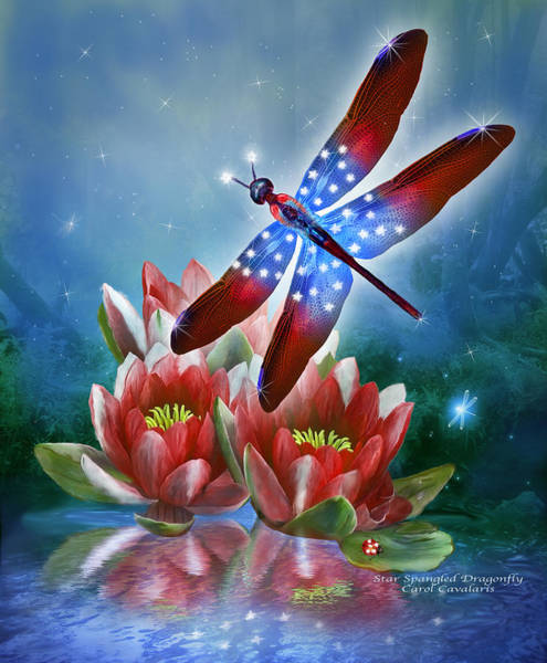 Mixed Media - Star Spangled Dragonfly by Carol Cavalaris