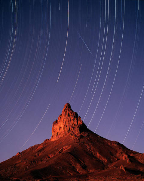 Star Track Wall Art - Photograph - Star Trails by David Parker/science Photo Library
