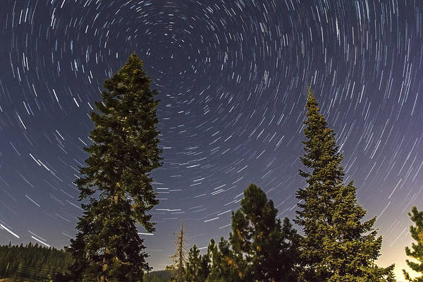 Photograph - Star Trails by Lee Harland