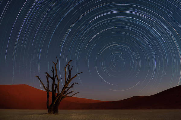 Africa Photograph - Star Trails Of Namibia by Karen Deakin