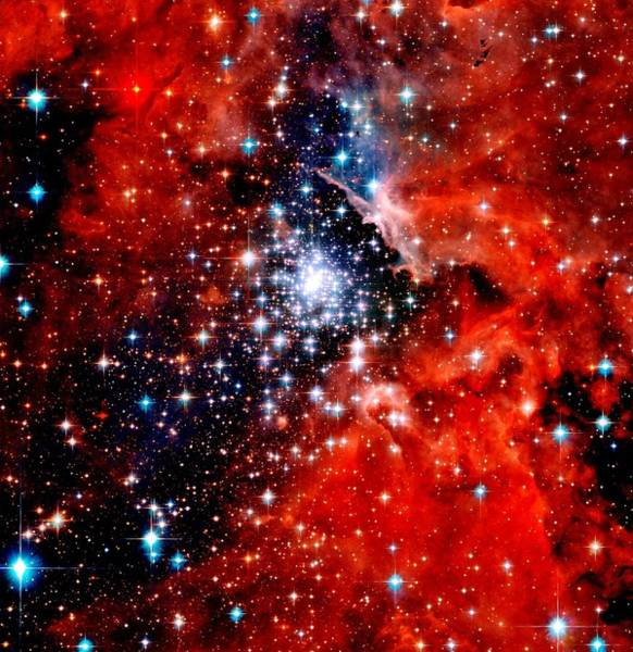 Wall Art - Photograph - Starburst Cluster by Benjamin Yeager