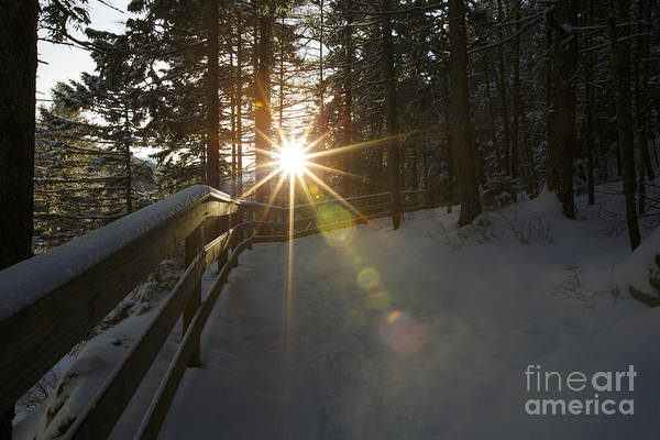 Photograph - Starburst Sun Shine - Franconia Notch State Park New Hampshire  by Erin Paul Donovan