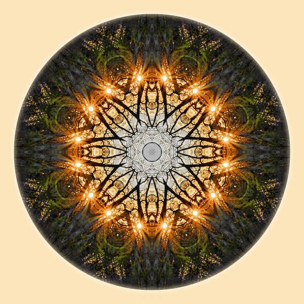 Digital Art - Starburst Through The Trees Mandala by Beth Sawickie