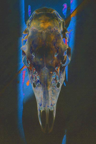 Deer Skull Digital Art - Stare Down by Dean Corbin