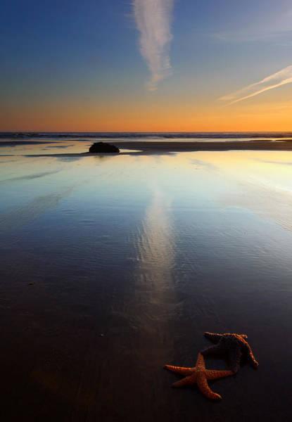 Starfish Photograph - Starfish Sunset by Mike  Dawson