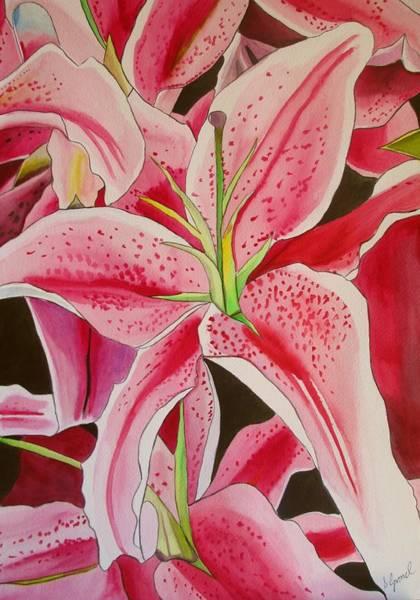 Stargazer Lily Art Print by Sacha Grossel