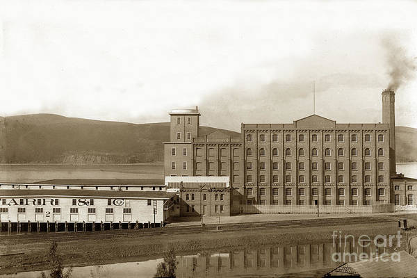Photograph - Starr And Co. Flour Mill At Crockett The South Shore Of Carquinez Strait California Circa 1887 by California Views Archives Mr Pat Hathaway Archives