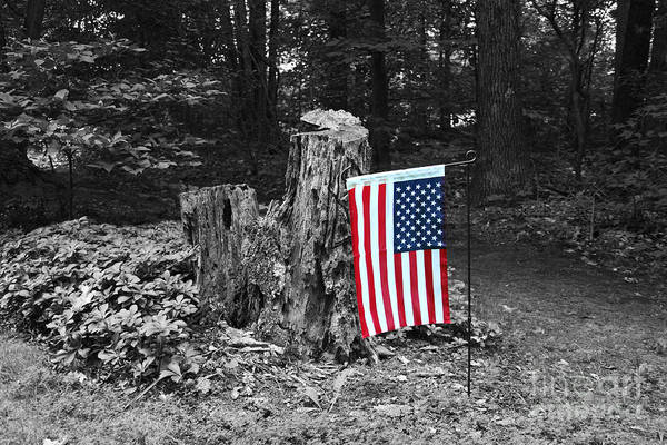 Photograph - Stars And Stripes With Selective Color by James Brunker