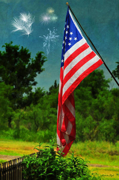 Wall Art - Photograph - Stars And Stripes Forever by Karen Slagle