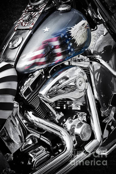 Harley Davidson Black And White Wall Art - Photograph - Stars And Stripes Harley  by Tim Gainey