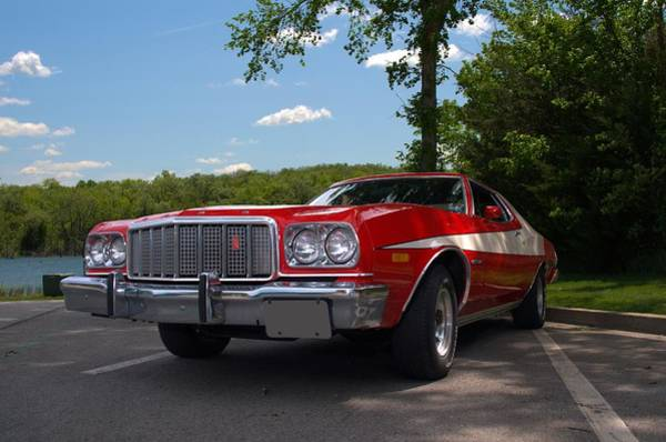 Photograph - 1974 Ford Troino Zebra 3 by Tim McCullough