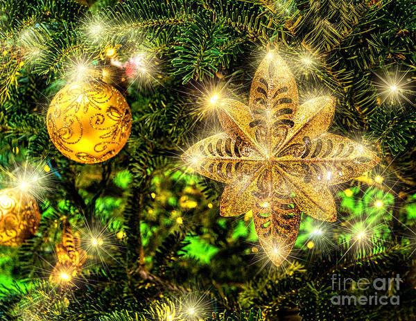 Photograph - Stary Christmas by Nick Zelinsky