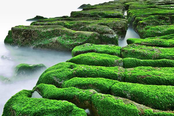 Taiwan Photograph - Static Immersion by Taiwan Nans0410