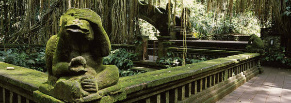 Wall Art - Photograph - Statue Of A Monkey In A Temple, Bathing by Panoramic Images
