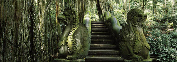 Wall Art - Photograph - Statue Of Dragons In A Temple, Bathing by Animal Images