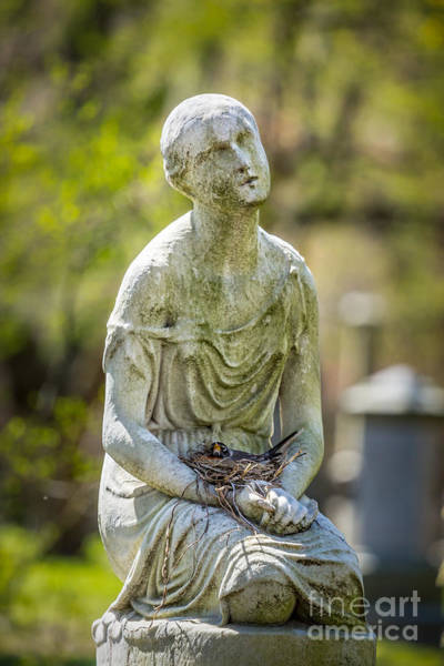 Photograph - Statue With Robin's Nest by Susan Cole Kelly