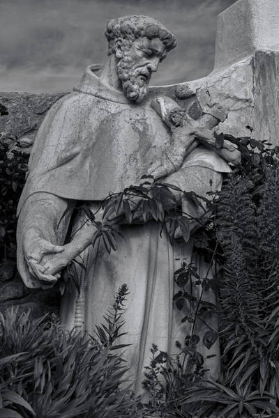 Carmel Mission Photograph - Stature Of Father Junepero Serra  In Black And White by Garry Gay