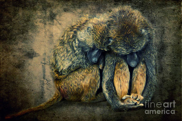 Digital Art - Stay Together by Angela Doelling AD DESIGN Photo and PhotoArt