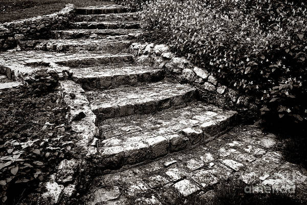 Photograph - Steady Stone Stairs by Olivier Le Queinec