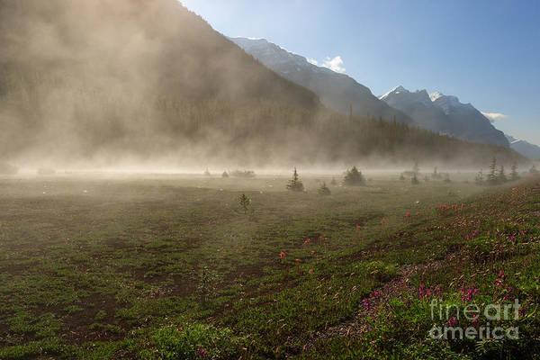 Photograph - Steam by Charles Kozierok