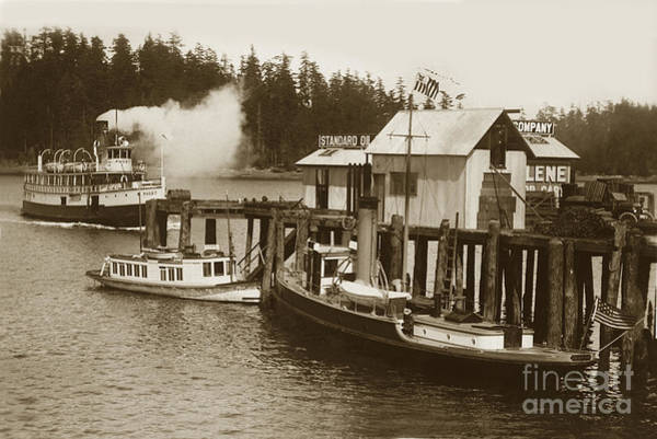 Photograph - Steam Ship Puget Coming In To Dock With The Concardia At The Dock 1911 by California Views Archives Mr Pat Hathaway Archives