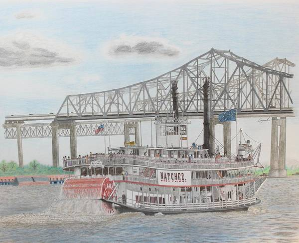 Mississippi River Drawing - Steamboat Natchez  by Hung Quach