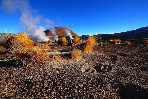 Wall Art - Photograph - Steaming Desert 2 by FireFlux Studios