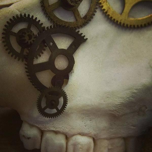 Steampunk Wall Art - Photograph - #steampunk #skull #clockworks #cogs by Heidi Cutter