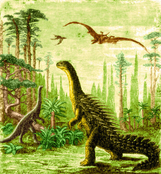 Photograph - Stegosaurus And Compsognathus Dinosaurs by Science Source