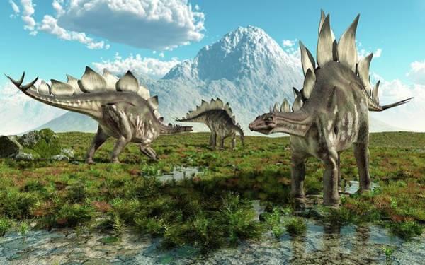 Palaeozoology Wall Art - Photograph - Stegosaurus Dinosaurs by Roger Harris