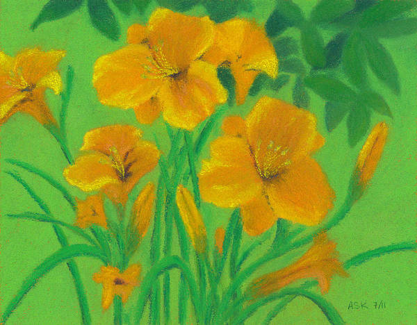 Pastel - Stella De Oro by Anne Katzeff