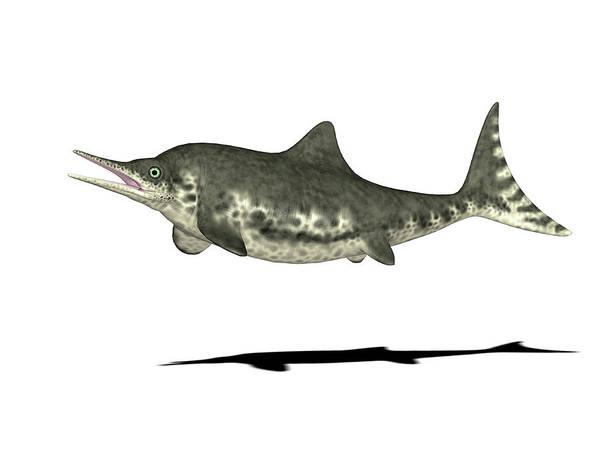 Paleozoology Wall Art - Photograph - Stenopterygius Prehistoric Marine Reptile by Friedrich Saurer