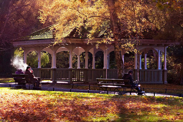 Photograph - Stephen's Green Gazebo / Dublin by Barry O Carroll