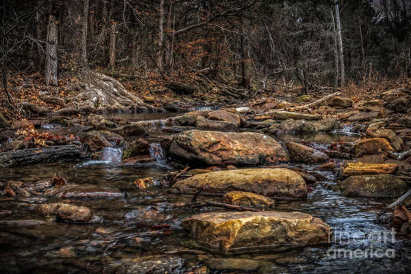 Photograph - Stepping Stones by Larry McMahon