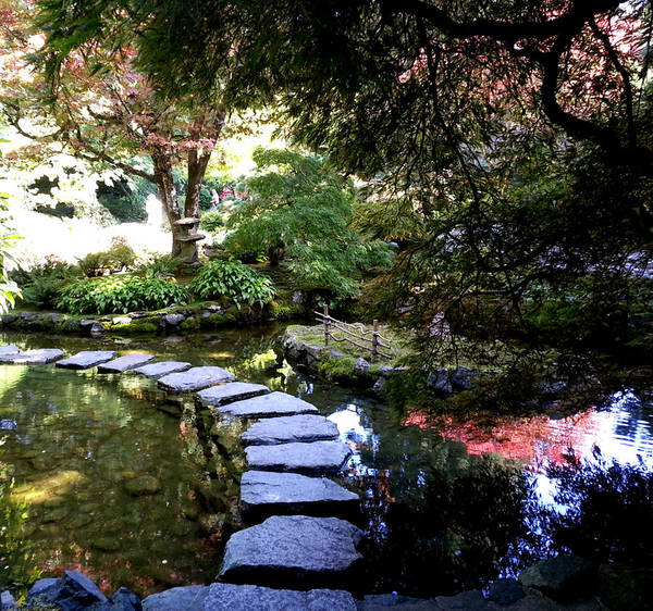 Photograph - Stepping Stones by Nikki Dalton