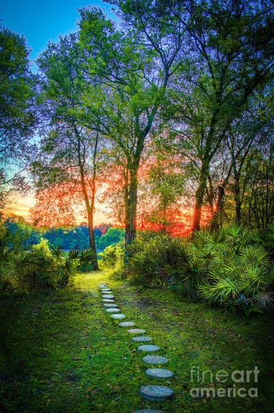Pathway Photograph - Stepping Stones To The Light by Marvin Spates