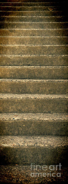 Photograph - Steps Into Mystery by Les Palenik