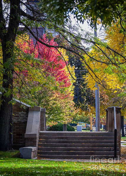 Photograph - Steps With Fall Colors Winona Minnesota by Kari Yearous