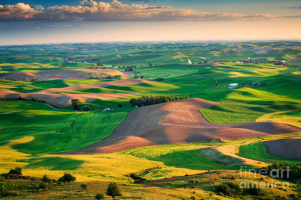 Western Pacific Photograph - Steptoe Butte Sunset by Inge Johnsson