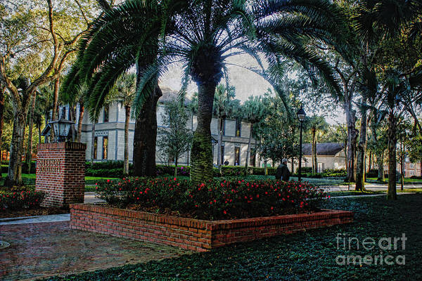 Photograph - Stetson In Deland by Deborah Benoit