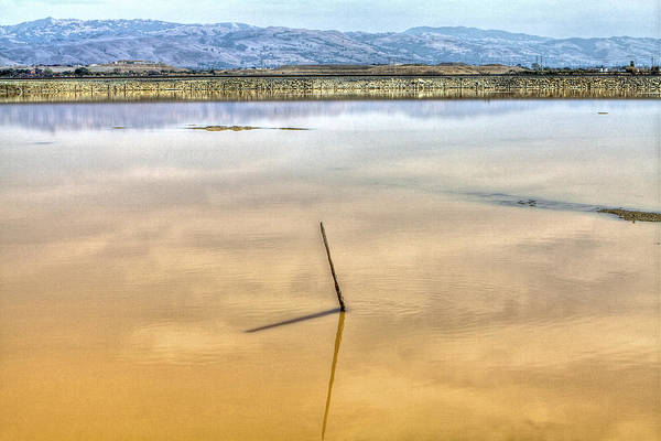 Alviso Photograph - Stick Reflection In The Marsh by SC Heffner