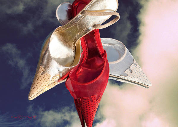 Photograph - Stiletto Dreams by Paulette B Wright