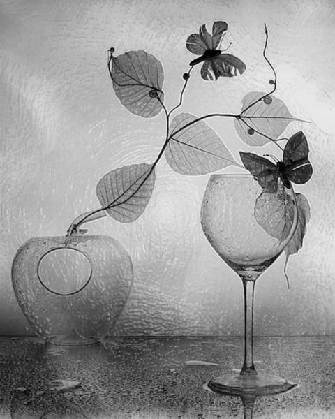 Post-impressionism Photograph - Still Life Beauty by Scott Mendell