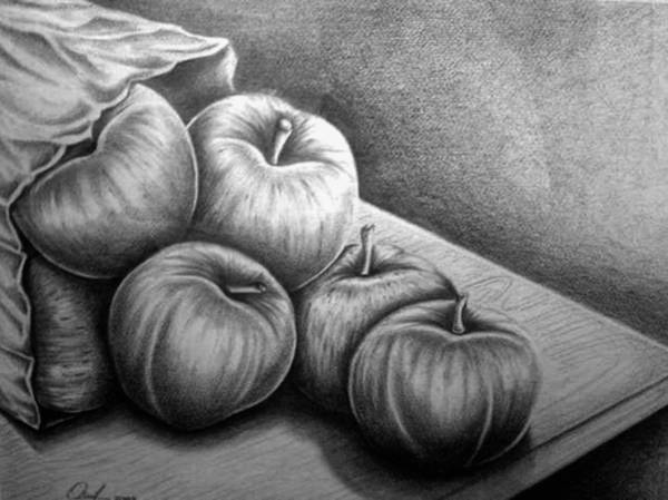 Drawing - Still Life Drawing by Owen Lafon
