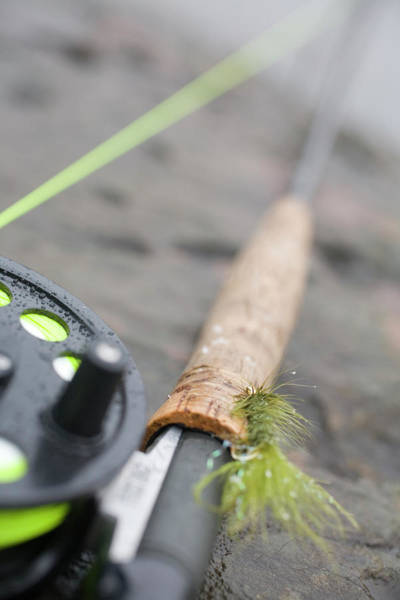 Angling Photograph - Still Life Of Fly Rod In Winter by Justin Bailie