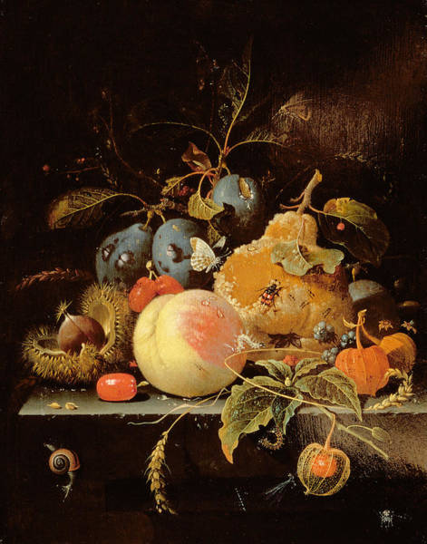Rotten Wall Art - Painting - Still Life Of Fruit And Nuts On A Stone by Abraham Mignon