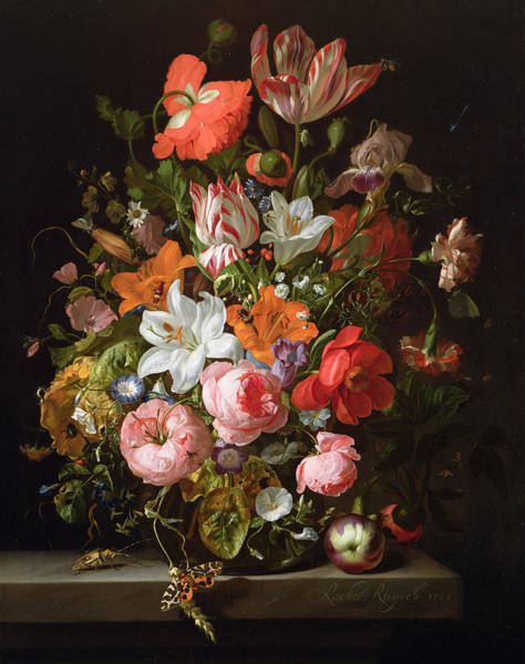 Iris Photograph - Still Life Of Roses, Lilies, Tulips And Other Flowers In A Glass Vase With A Brindled Beauty by Rachel Ruysch