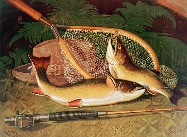 Angling Photograph - Still Life With A Salmon Trout, A Rod And A Net by Thomas Sedgwick Steele